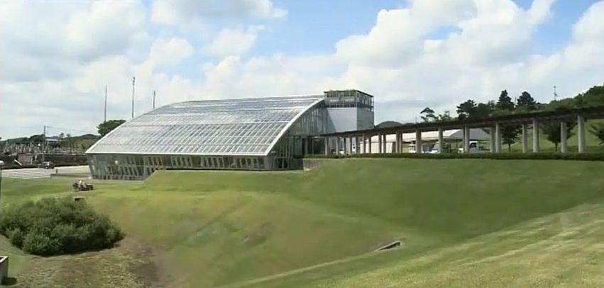 冬でも25度以上に保たれる、クリスタルアーチのガラス温室です。