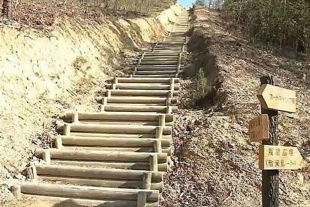 散策道の途中からまっすぐに伸びた階段コース