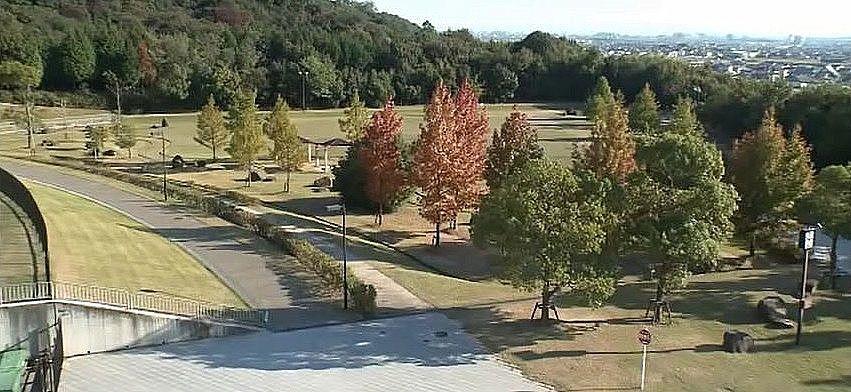 豊かな自然、静かな環境に恵まれた加古川運動公園
