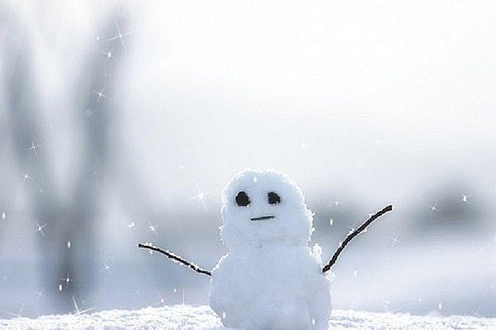 冬を乗り切ろうと頑張る雪だるま