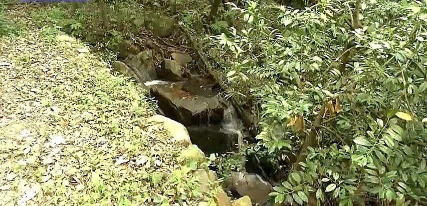 傾斜を利用して水田まで導かれる山からの湧水