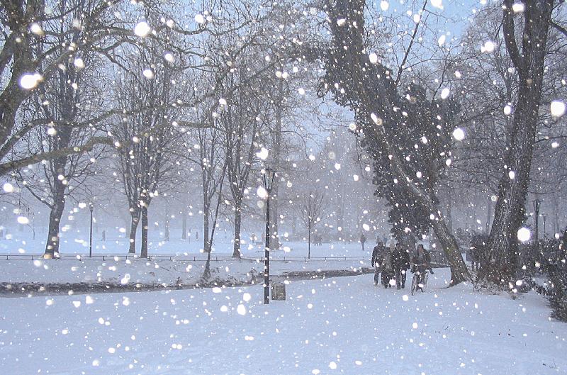 大寒 一年で一番寒い時期をあらわす豪雪