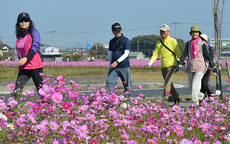 「第30回 加古川ツーデーマーチ」の季節が近づいてきました!参加者募集は令和元年9月1日からです!