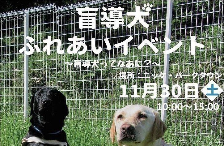 盲導犬について、知っていただきたいのです「盲導犬ふれあいイベント」が11月30日(土)ニッケパークタウンで開催されます!