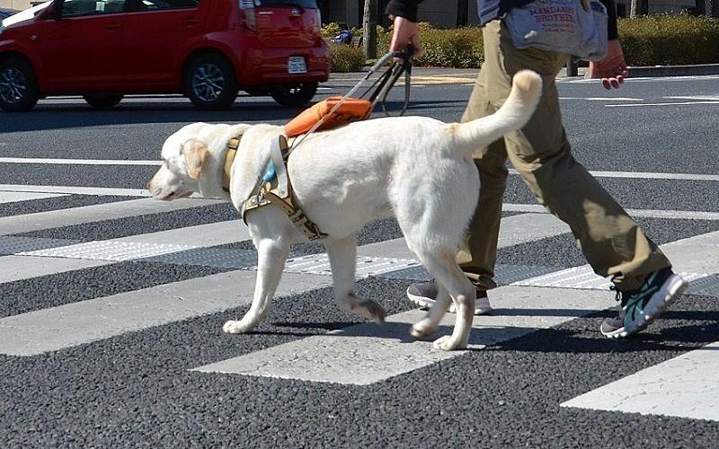 目の見えない人、見えにくい人が安全に歩けるように!
