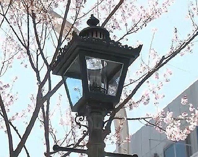 レトロなデザインのベルデモールの街灯です。