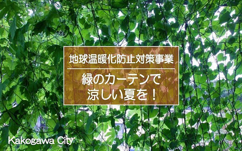 加古川2021「緑のカーテン」で涼しい夏を!参加者にはゴーヤーの種が配布されます!