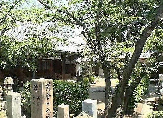 光念寺の栗の木