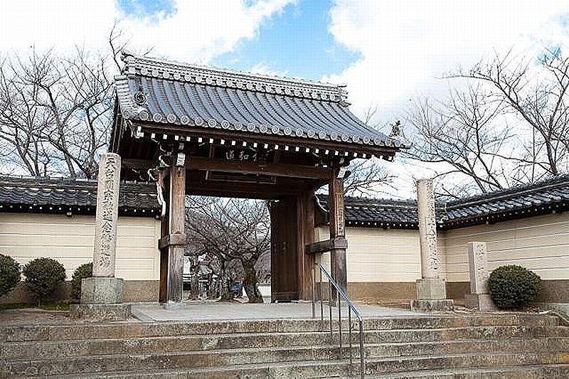 加古川市野口町野口に建つ教信寺の山門