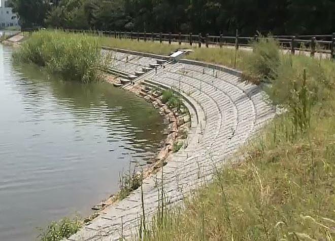 コンクリートブロック護岸で包みを強化された寺田池