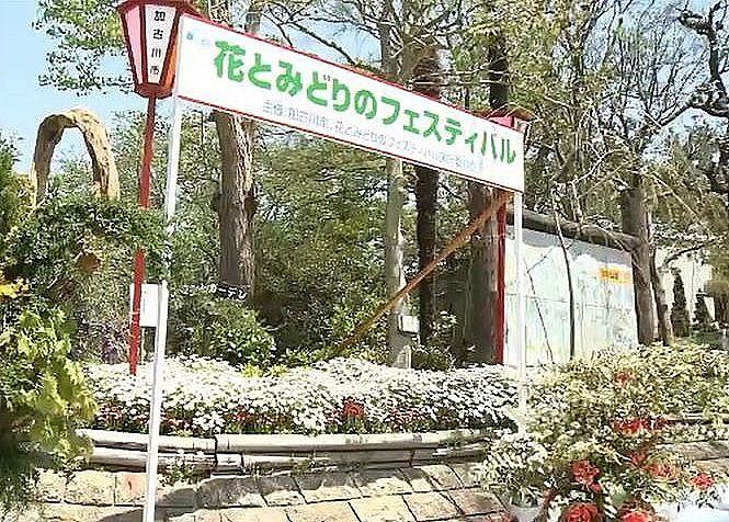 毎年4月28日、29日に開かれる『花と緑のフェスティバル』