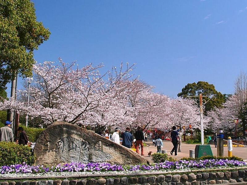 日岡山公園の桜が満開の入口