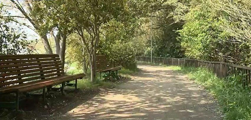 ベンチや柵などが設けられた、およそ1キロメートルの散策路、新井緑道