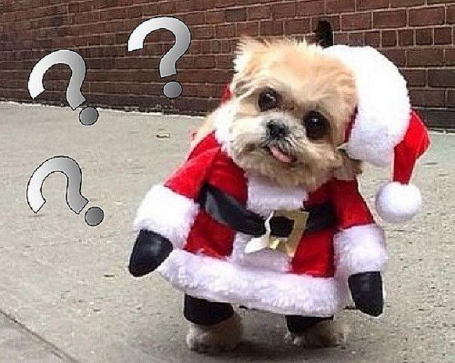 「メリークリスマス」はいつ言うの? 「メリークリスマス」という言葉の意味は?